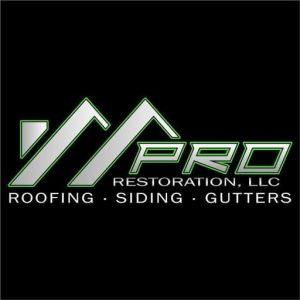 Pro Restoration LLC favicon